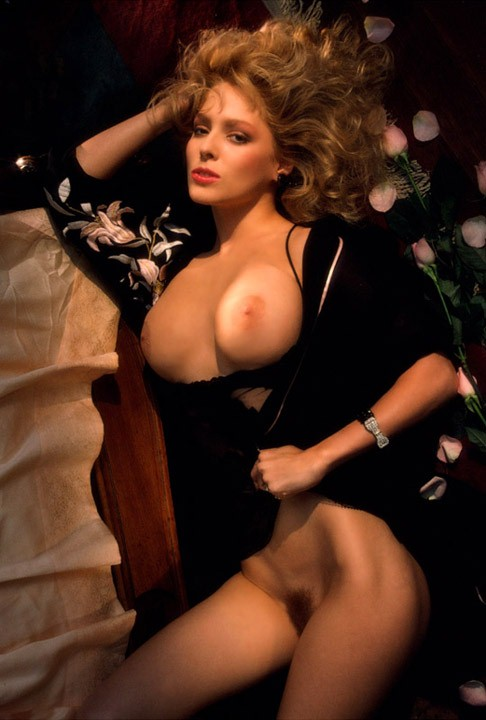 Your Stacy leigh arthur nude has analogue?
