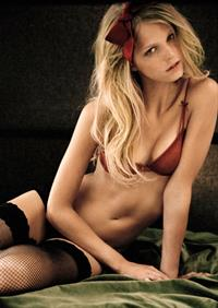 Erin Heatherton in lingerie