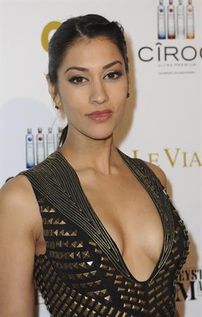 Janina Gavankar - OK! Magazine Pre-Oscar Party in West Hollywood (Feb 23, 2012)
