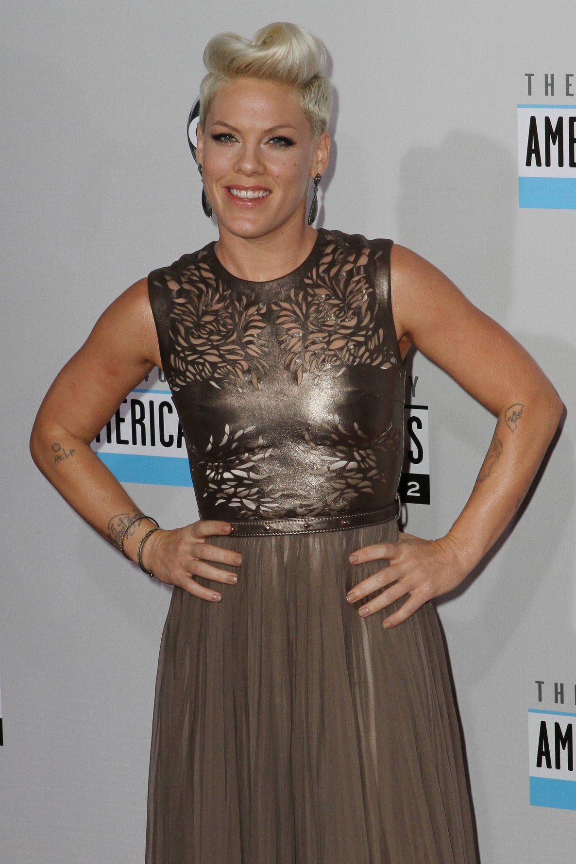 Pink American Music Awards (November 18, 2012)