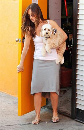 Minka Kelly takes her dog to the groomer in LA October 2, 2012