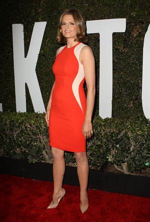 Stana Katic  Mandela: Long Walk To Freedom  Los Angeles Premiere - Hollywood, Nov. 11, 2013
