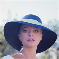 Virna Lisi Divers Pics Pic with Marcello Mastroianni
