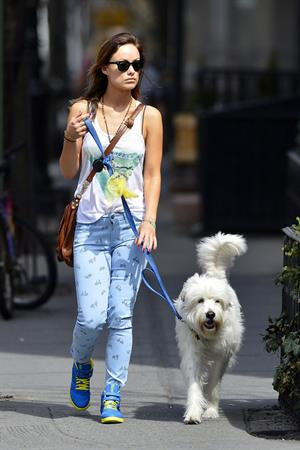 Olivia Wilde walking her dog in New York City - April 9, 2013